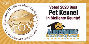 Alden's Kennels Dog Training,IL,Best of the Fox